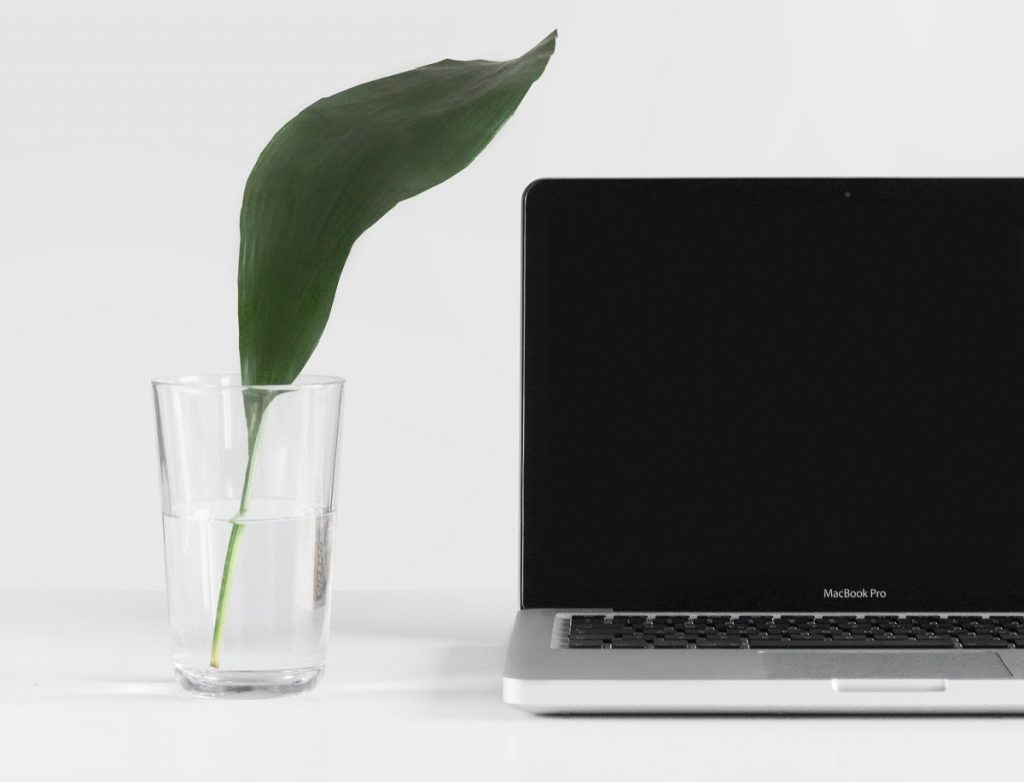 The simplicity of this computer and green leaf fits the theme of a simple marketing funnel.